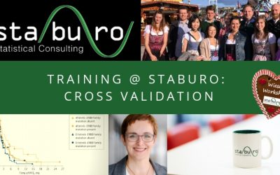 Training @ Staburo: How to use cross-validation to obtain reliable subgroup effects